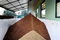 molitura-olive-produzione-olio-extravergine-lagodigarda-15